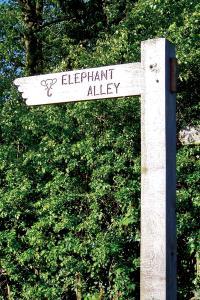 Elephant walk sign WEB K