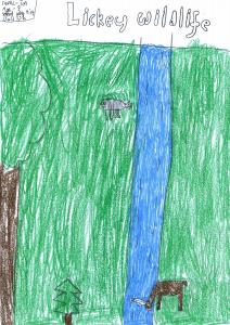 Tas Age 9 5SB LHPS WEB 2017